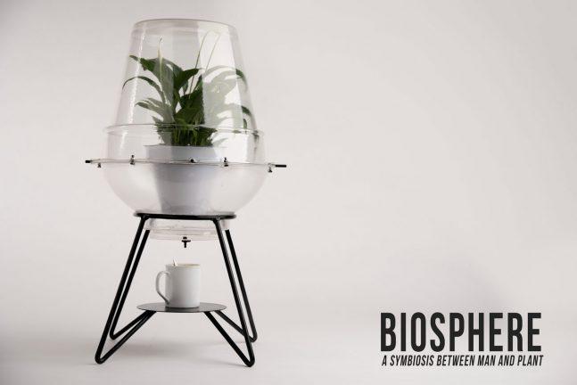 Biosphere op DORP